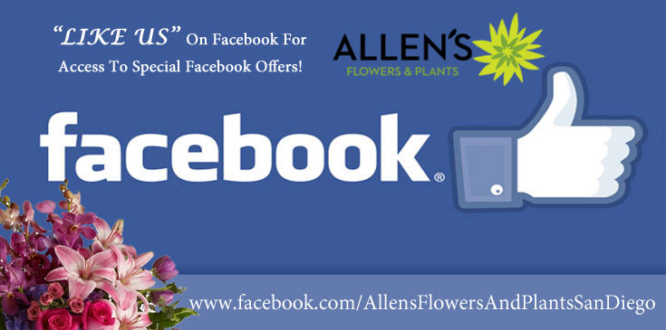 Like Allen's Flowers and Plants to Gain Access to Online Facebook Specials.