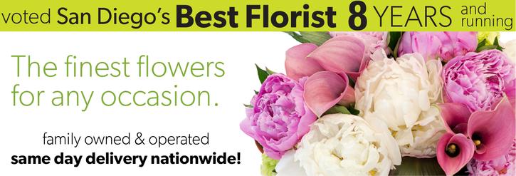 Flower Arrangements - Shop By Color