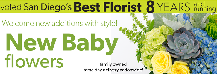 New Baby Flowers, New Baby Gifts, New Baby Floral Arrangements